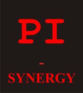 PI - SYNERGY